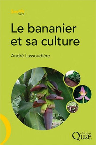 Book cover: Bananier et sa culture