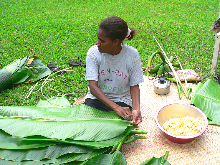 Banana leaves can be used to wrap the laplap, but Ni-Vanuatu prefer the thicker leaves of Heliconia plants which, like bananas, belong to the order Zingiberales. Fibre is removed from the midrib to make the ties that will be used to secure the laplap.