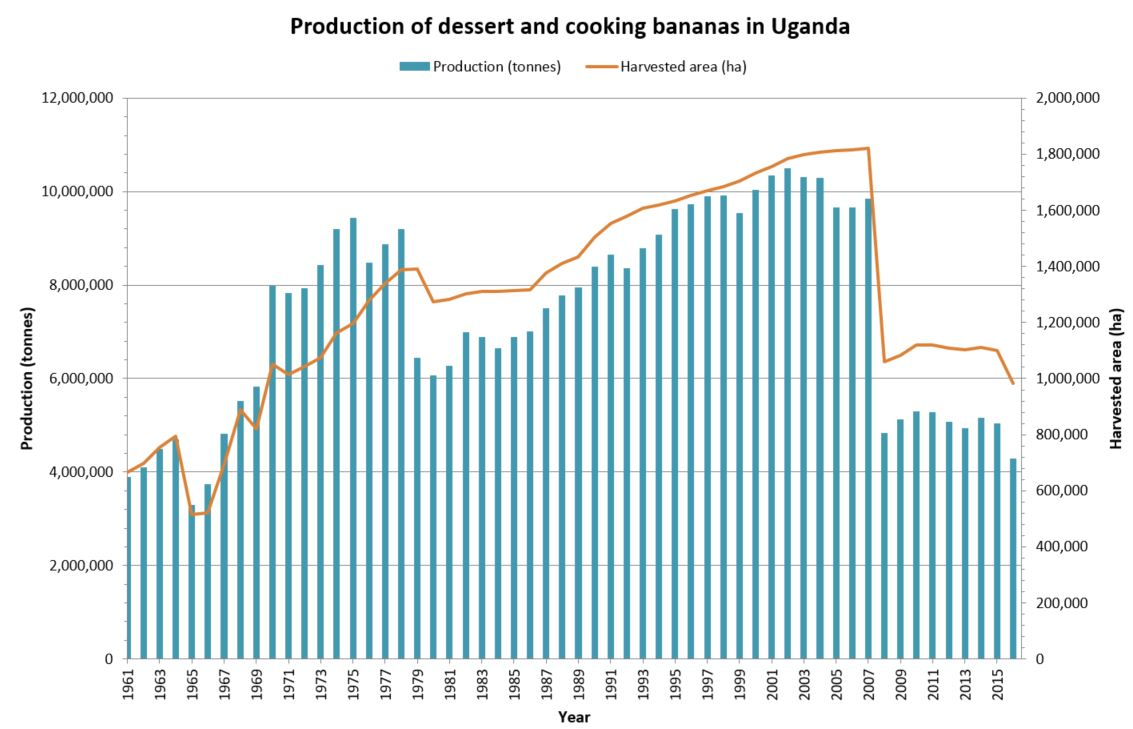 Production and harvested area (1961-2016). Source FAOSTAT