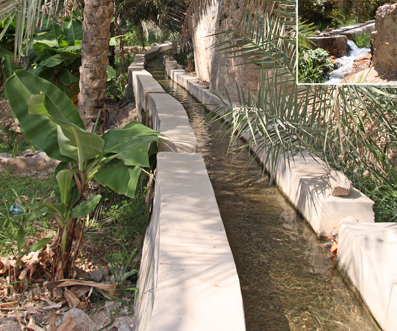 The traditional flood irrigation system is the falaj, a gently sloping channel interspersed with shafts through which the water is let out (insert). (Photos by S. Behrendt)