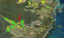 The red arrow arrow points to the infested farm in the Tully river valley. The green areas indicate farms that have been surveyed for TR4, whereas the yellow ones indicate farms that had not yet been surveyed at the time. (Courtesy of Queensland DAF)