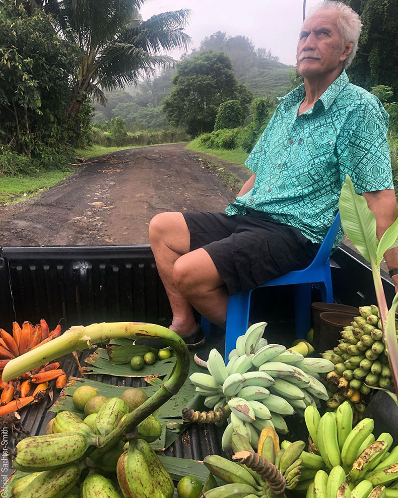 Cruising the island of Rarotonga in the Cook Islands with Papa Moe to get a sense of the place and of the banana diversity. It takes only a couple of hours to drive all the roads on the island. The fruit haul we amassed in one afternoon were gifts from local residents, and a good sign of the welcoming and friendly nature of the small community. In the lot are bananas that are traditional Pacific cultivars brought by early settlers, mixed with more recent introductions.